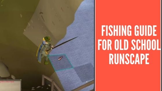 Fishing Guide For OSRS